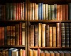 Новый маршрут приуроченный ко Дню библиотек