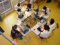 Как выбрать оборудование для швейной мастерской: обзор характеристик